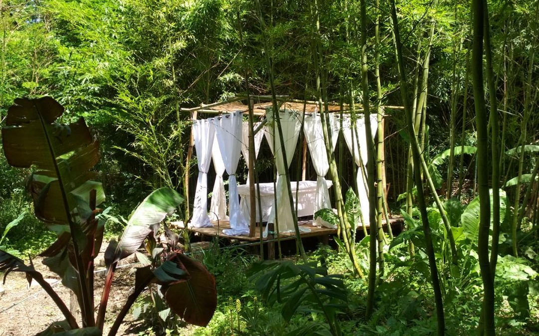 Détente au coeur des bambous !